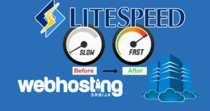 LiteSpeed Cache Settings – Purge